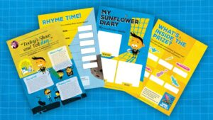 Show and Tell teaching resources